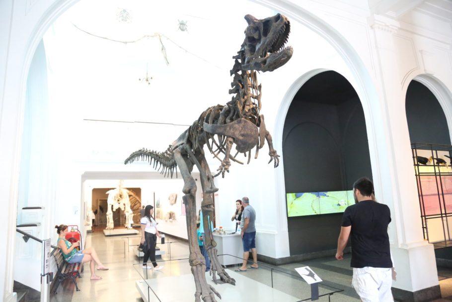carnotauro museu de zoologia sp