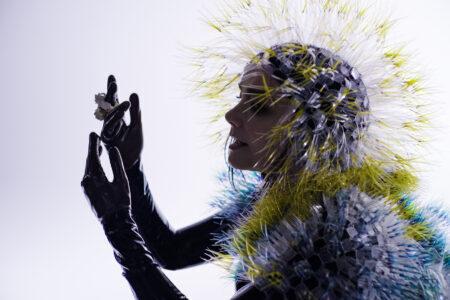 Videoclipe de Björk
