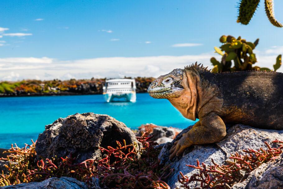 Ilhas Gakápagos