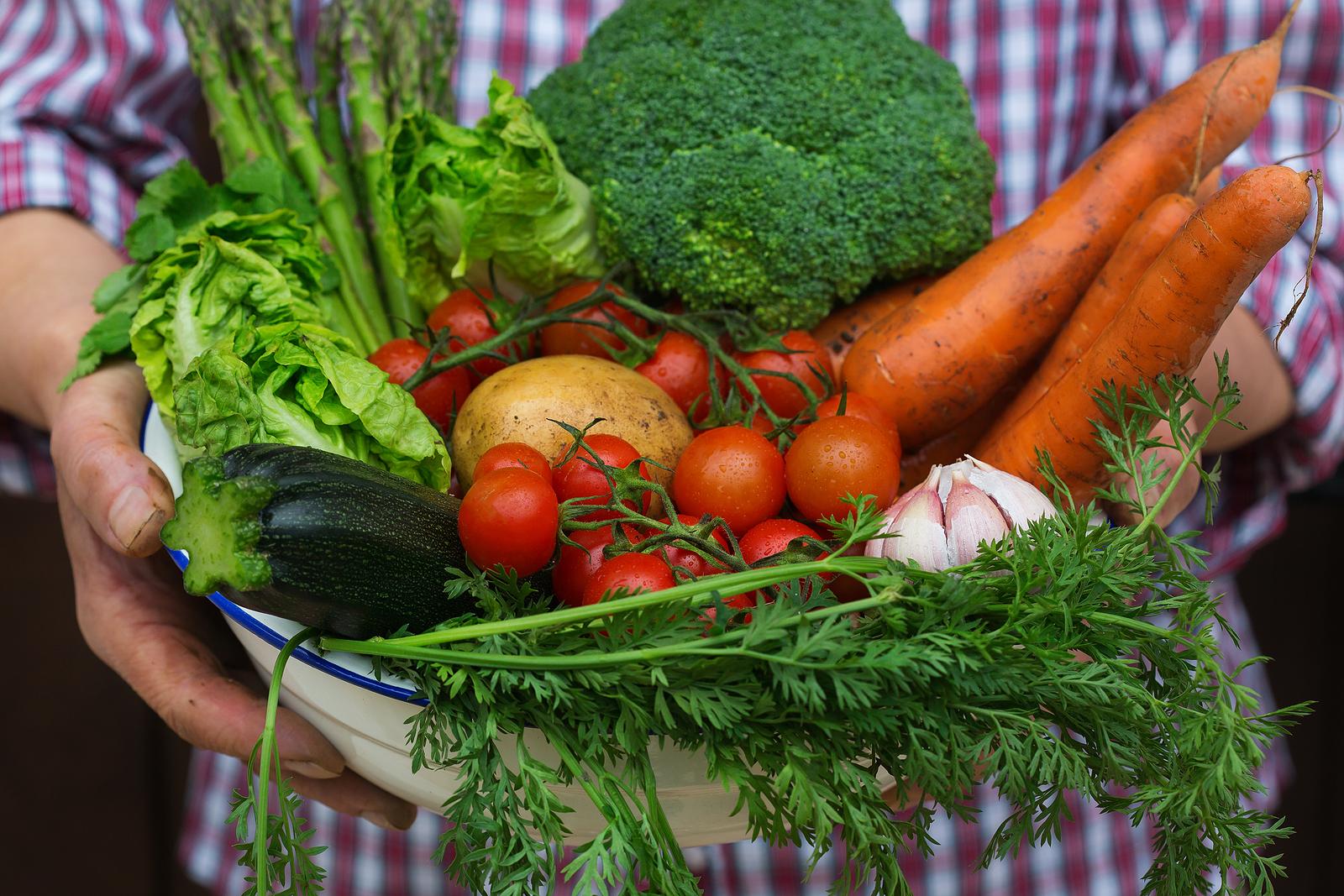 Assim como as frutas, legumes e verduras são fontes de fibras, água, vitaminas e minerais