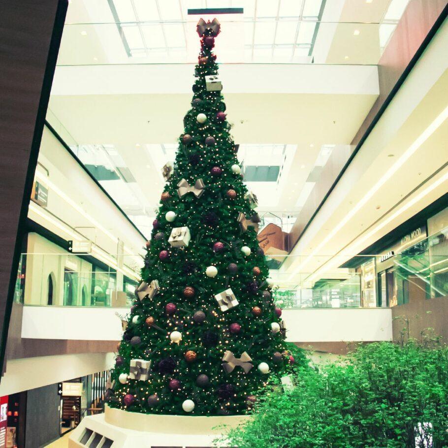 Natal Parque da Cidade