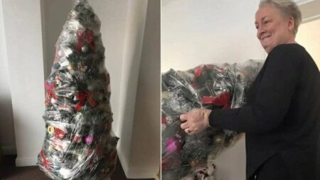 Idosa viraliza após mostrar técnica para 'desmontar' árvore de Natal