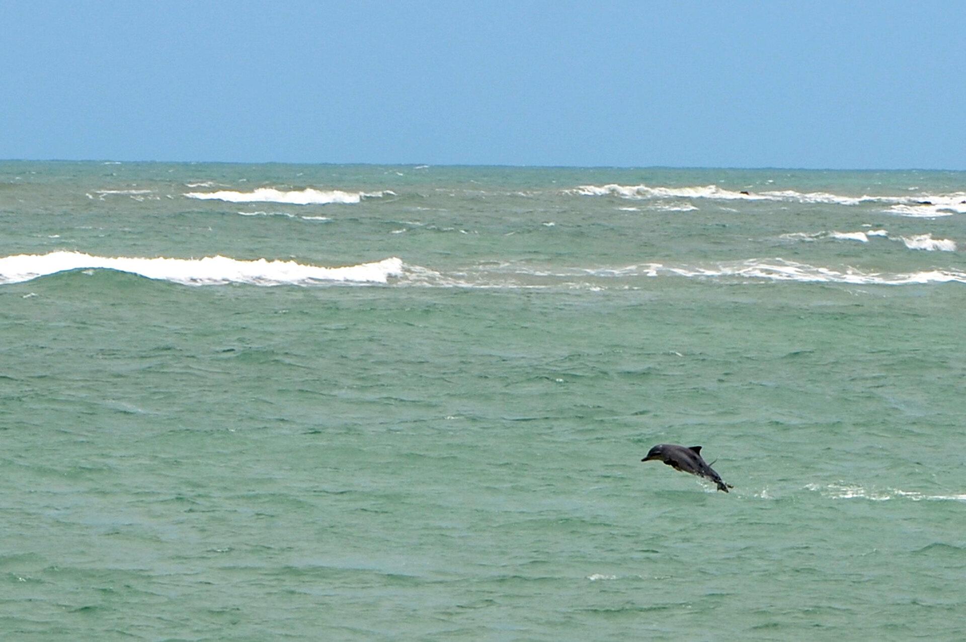 Baía dos Golfinhos, em Tibau do Sul (RN)