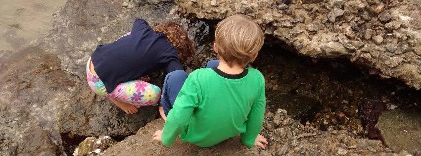 foto: reprodução fanpage Projeto Criança e Natureza