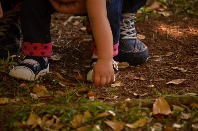 Crianças que brincam na natureza regularmente são mais felizes e saudáveis, possuem boa convivência social e têm melhor desempenho escolar.