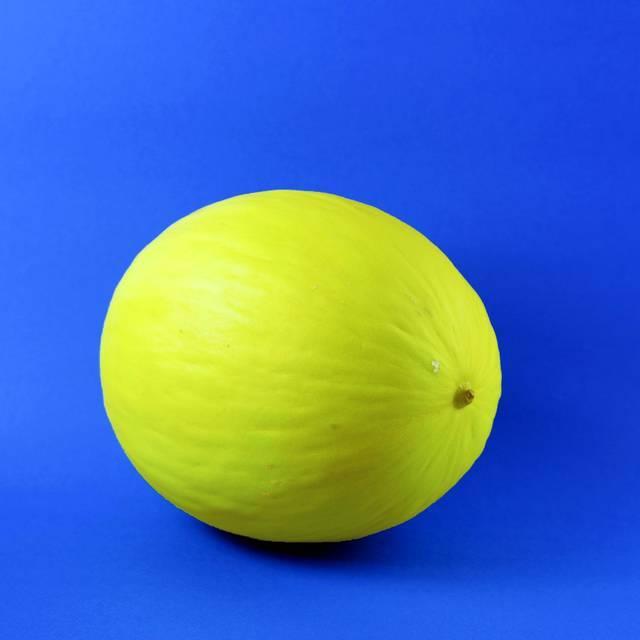 Prefira os de casca firme, cor viva e sem rachaduras. Pressione a extremidade oposta à haste do melão; se ela ceder um pouco, está no ponto. Se estiver muito firme, ainda pode estar um pouco verde e, por isso, não será tão doce quanto um maduro. Mas se a extremidade puder ser pressionada com muita facilidade, em uma área superior a uns 5 cm de raio, a fruta provavelmente está passada. Se não for possível sentir um aroma adocicado, provavelmente foi colhido antes da hora, o que torna seu amadurecimento mais lento