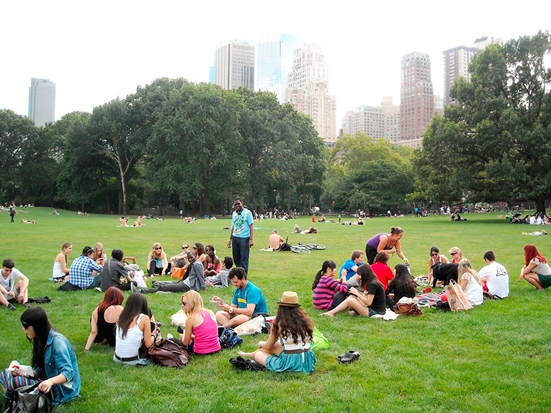08-picnic