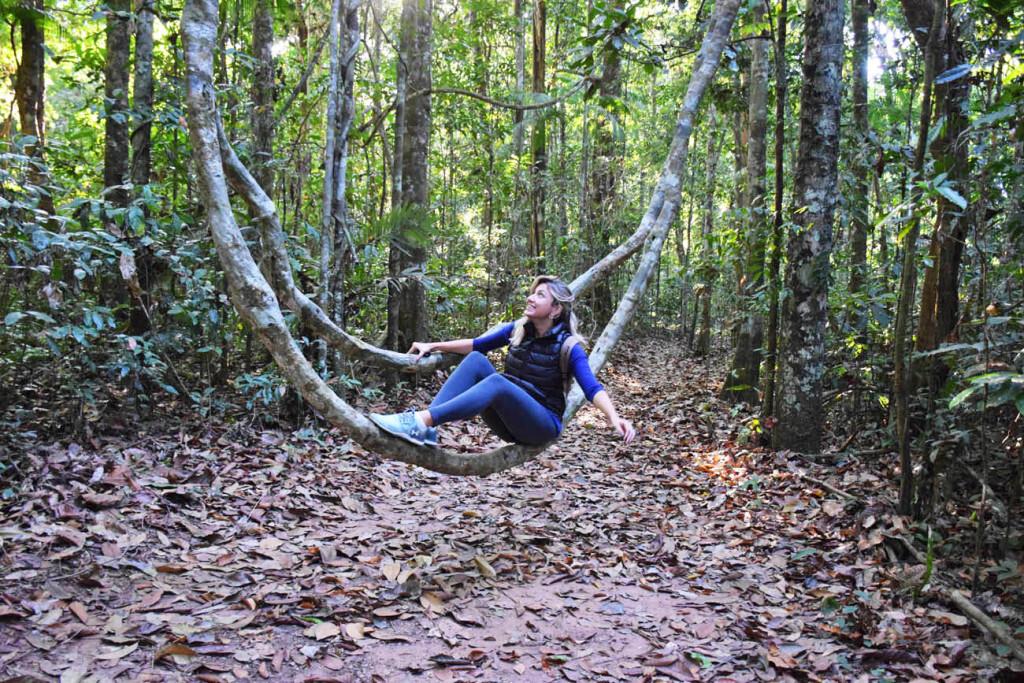 Em uma das trilhas da Reserva do Cristalino, na Floresta Amazônica