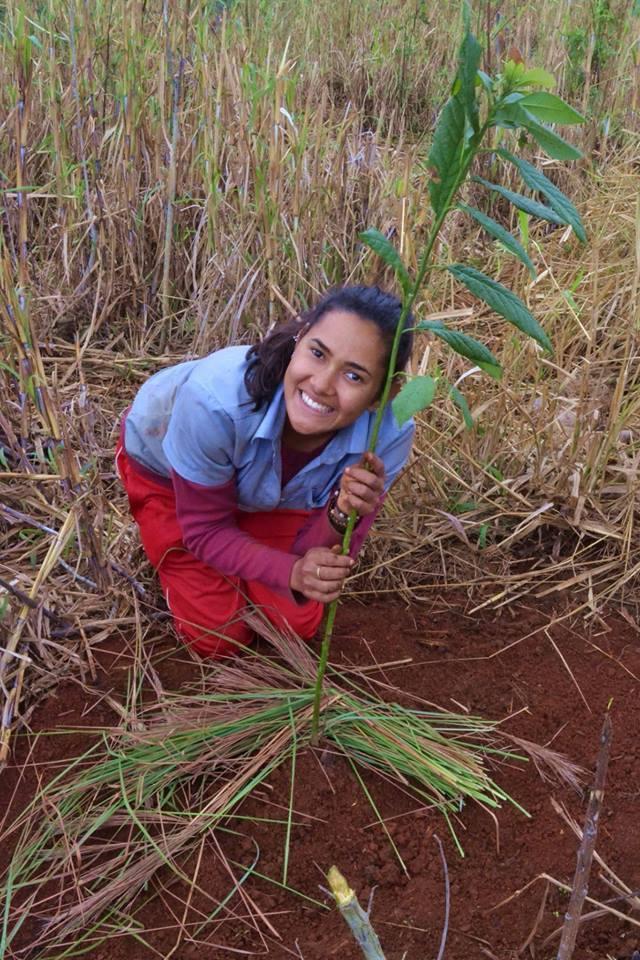 Primeira muda plantada na Agrofloresta da Ecovila Dom José