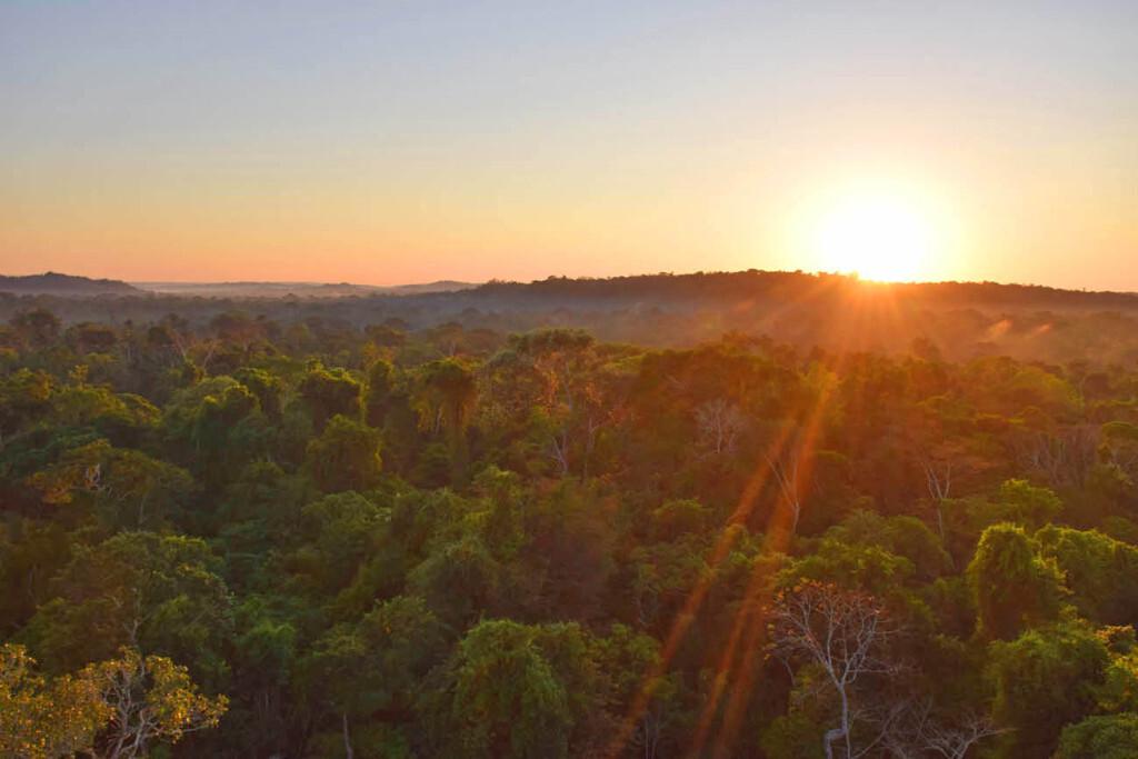 Nascer do sol do alto da torre de observação do Cristalino Lodge, Floresta Amazônica