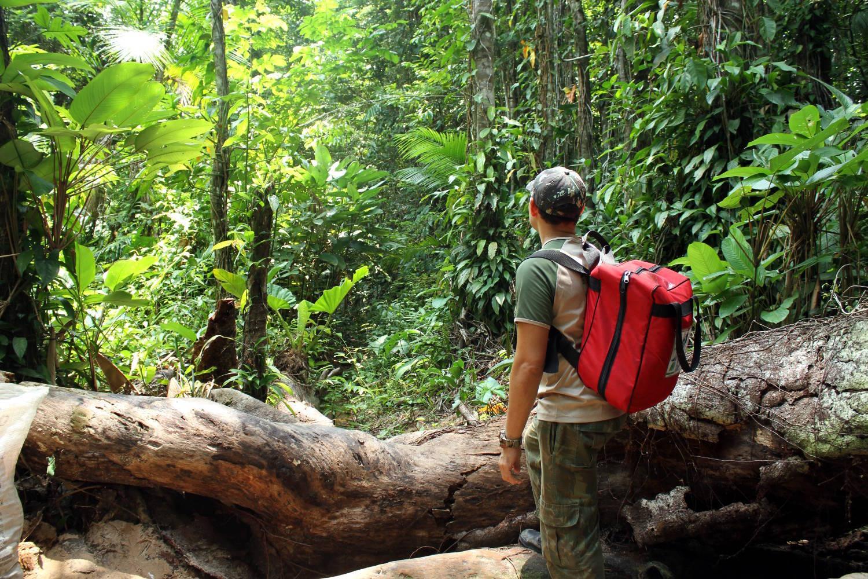 Trilha da Mariana, no Parque Estadual do Utinga