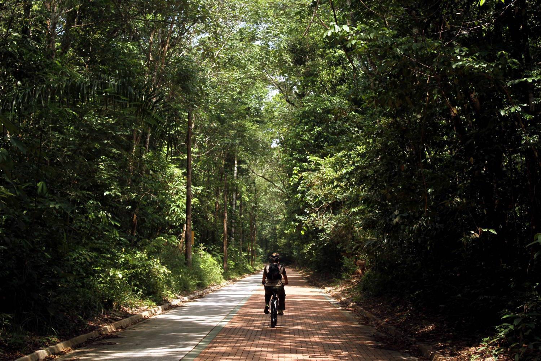 Ciclismo no Parque Estadual do Utinga, em Belém