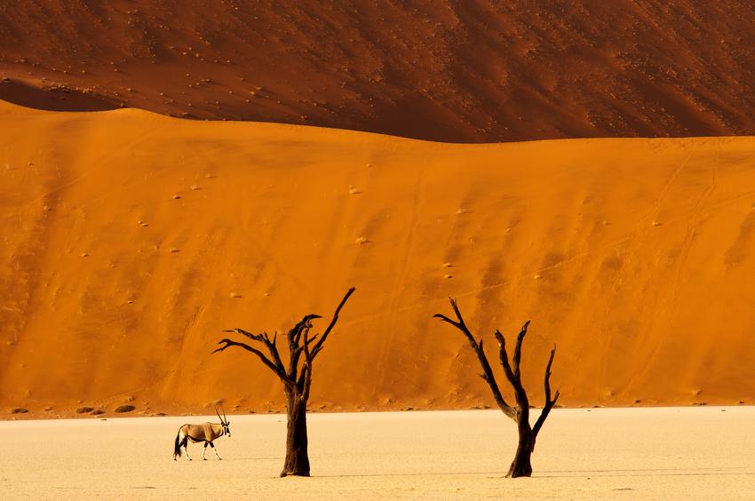 Parque Nacional Namib-Naukluft, com sua cor de laranja queimado