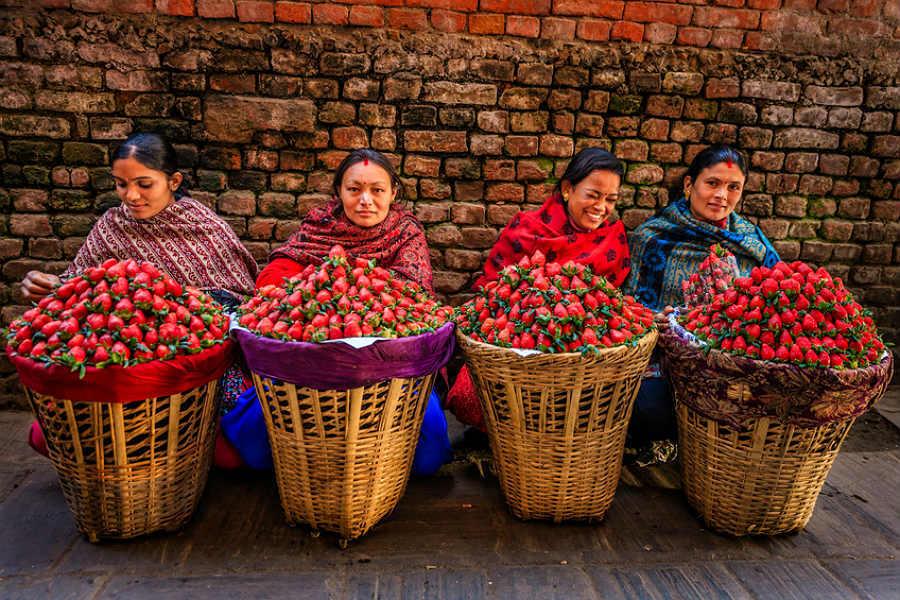 Nepalesas vendem morangos frescos em rua de Katmandu