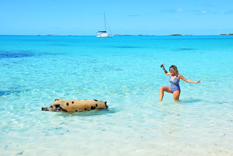 Pig Beach - Exuma - Bahamas