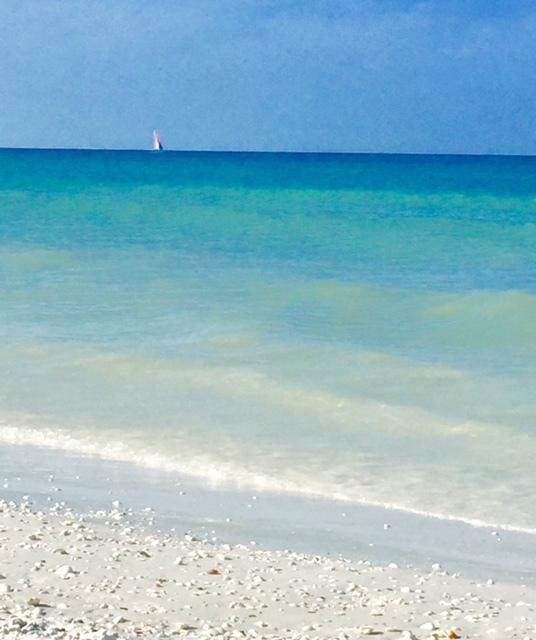 Mar azul turquesa e areia branca em Paradise Coast