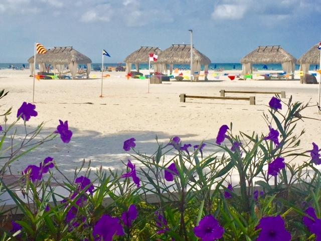 Bangalôs na linda praia de Marco Island