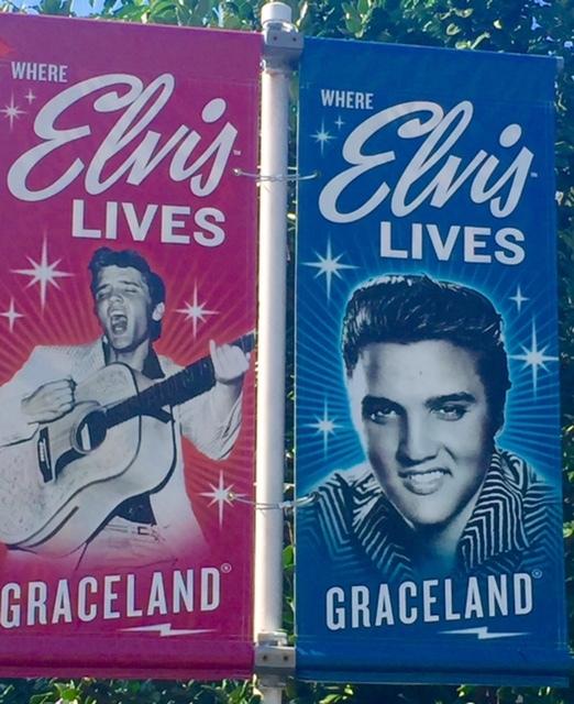 cartazes na bilheteira: Gracelande onde vive Elvis
