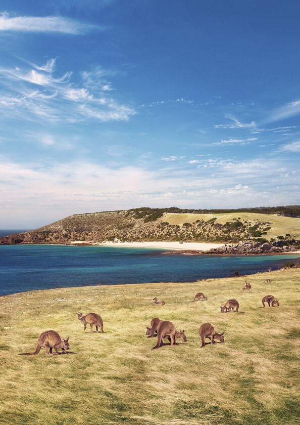 Stokes Bay, em Kangaroo Island