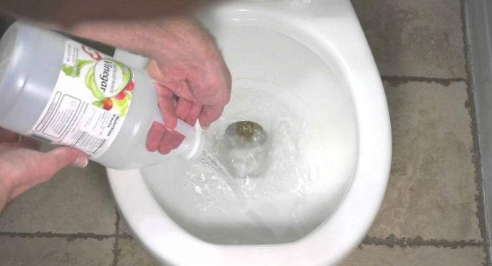 vinagre vaso sanitário