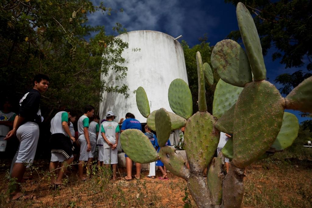 Crianças durante visita à área experimental do Cepfs; crédito: Na Lata