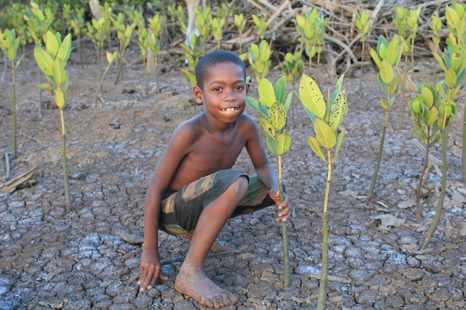 Foto: reprodução/Eden Reforestation