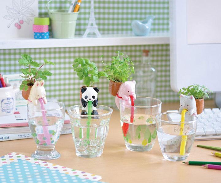 Já imaginou um vaso que rega as plantas sozinho?