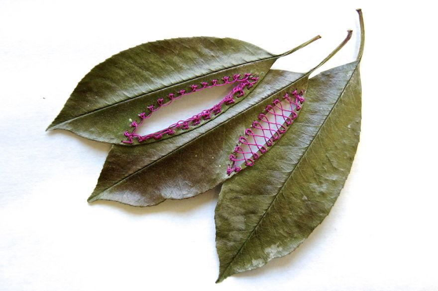 Bordado feito em folhas, da artista norte-americana Hillary Fayle