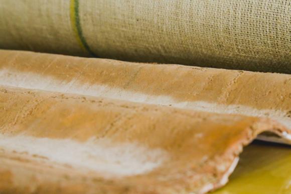 Ecotelha é desenvolvida por pesquisadores da Universidade Federal do Amazonas