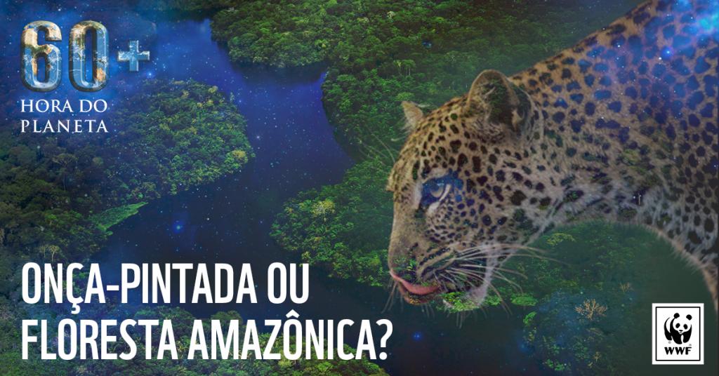 Onça-pintada é candidata em campanha da Hora do Planeta a causa ambiental mais importante do Brasil; concorda?