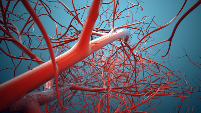 Vascular bifurcations background. Shallow depth of field 3d render.