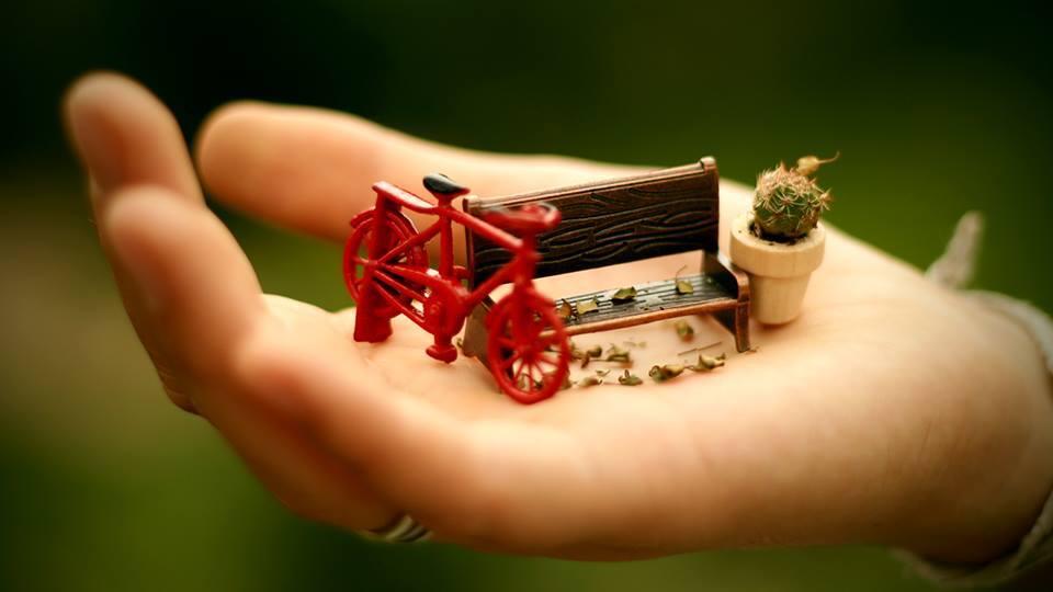 mini jardim curitiba : mini jardim curitiba:Tudo relacionado aos Minis Mundos somos nós que fazemos. Da