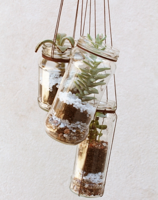 mini jardins no vidro:uso desta plantinha, o Blog do Elo7 ensinou a fazer um lindo mini