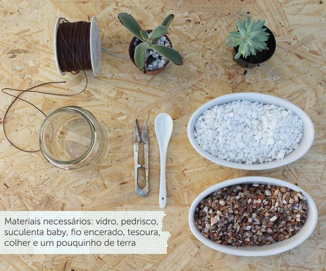 mini jardim suculentas:vasinho de mini-suculenta (ou suculenta baby) – você encontra