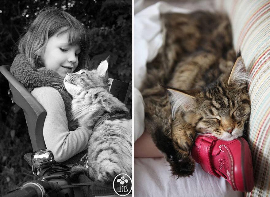 thula-therapy-cat-autistic-artist-iris-grace-23