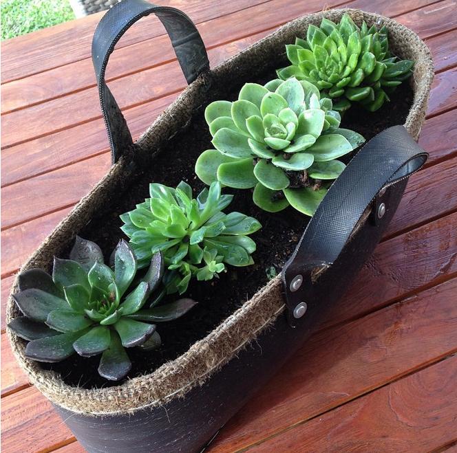 ideias para montar um jardim pequeno  17 ideias para criar pequenos
